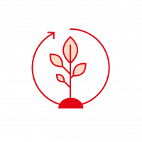 Red plant inside a round arrow icon